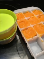 Ice cubes of food. Genius.