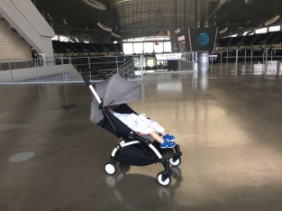 Best travel buggy around